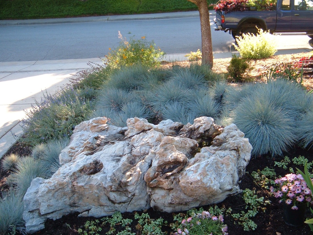 Front year transformed with water smart xeriscape.