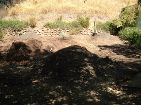 Silicon Valley lawn removed and readied for xeriscape.