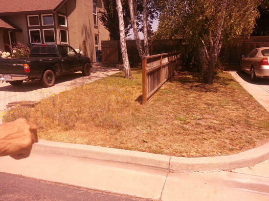 Front yard with dead grass and dry dirt before landscaping by Earth Art.