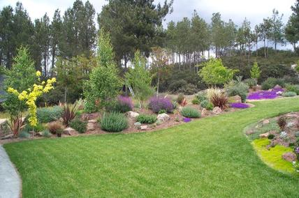 Professionally designed landscape at residential home.