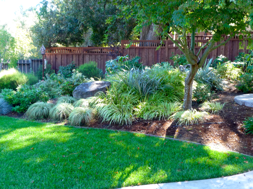 Completed back yard with grass, rocks, plants and wooden fence.